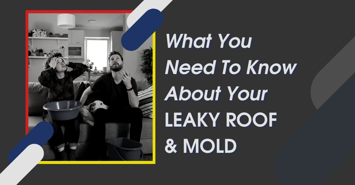 What You Need To Know About Your Leaky Roof And Mold