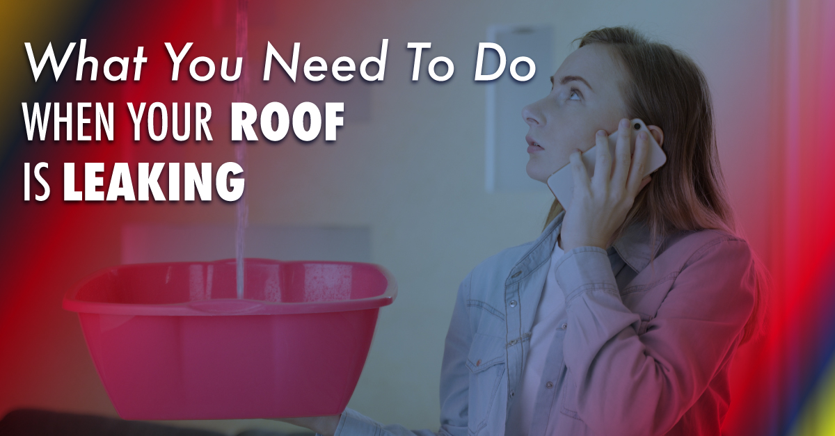 What You Need To Do When Your Roof Is Leaking